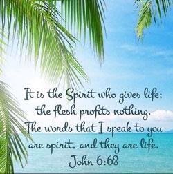 John 6:63