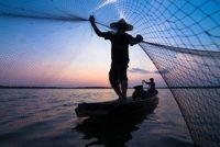 Casting the net (HappySunStock)