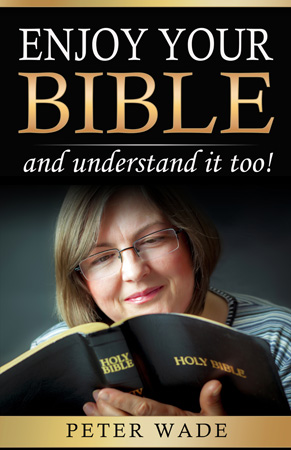 Enjoy Your Bible cover